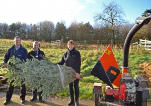 Have your real Christmas Tree collected by Teesside Hospice