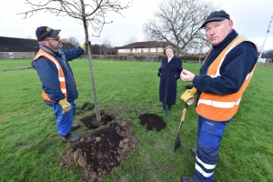 Oak Tree Planted in Tribute to Town's NHS Covid Heroes
