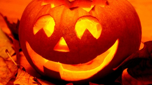 Things Get Spooky at Newham Grange Farm over Half Term